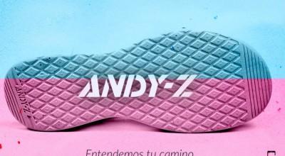 Diseño de displays de campaña y web.ANDYZ